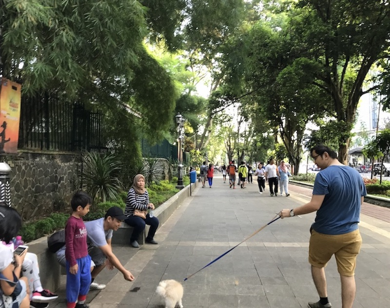 Kebun Raya Sidewalk