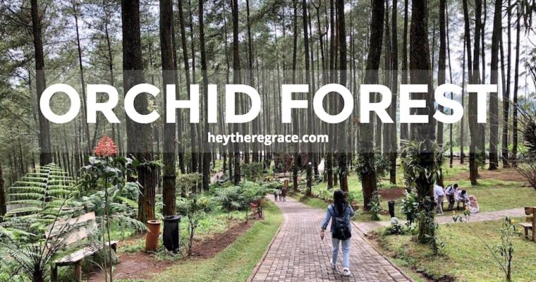 Orchid Forest Lembang, Bandung