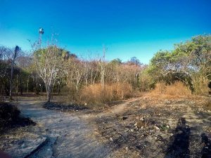 heytheregrace.com   Pulau Panjang at Jepara 1   Pulau Panjang Jepara 1