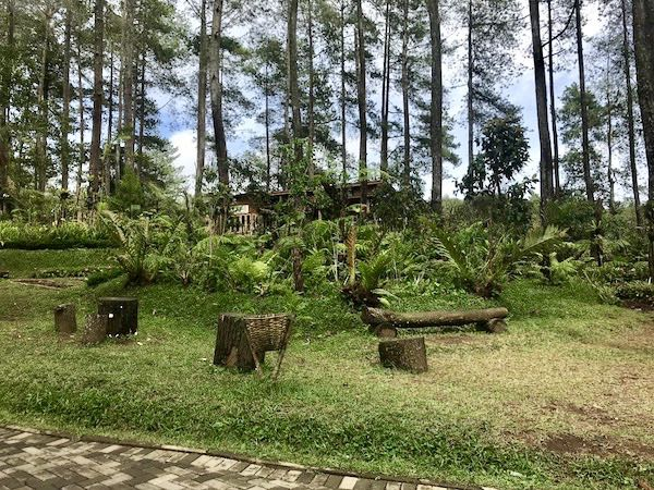 heytheregrace.com | Orchid Forest Lembang 3