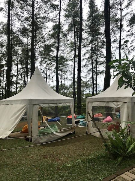heytheregrace.com | Orchid Forest Lembang 7