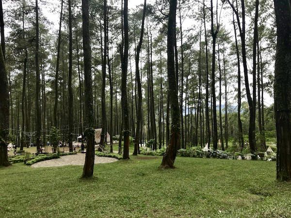 heytheregrace.com | Orchid Forest Lembang 9