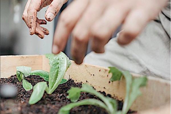 Menolak Merusak Lingkungan Bersama TAN – EUH dan The Upcycling Company #bukainspirasi