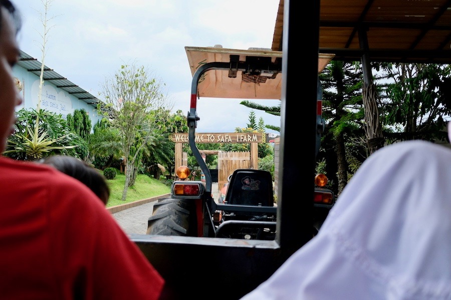 heytheregrace.com | Naik Kereta Safari Farm di Batu Secret Zoo, Jatim Park 2, Malang