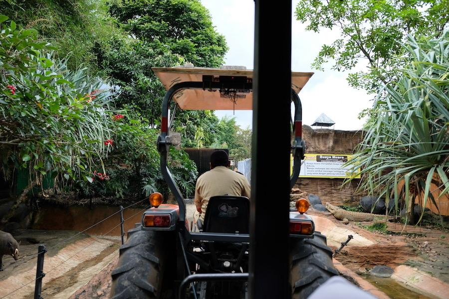 heytheregrace.com | Batu Secret Zoo, Jatim Park 2, Malang | Safari Farm | Buaya Muara