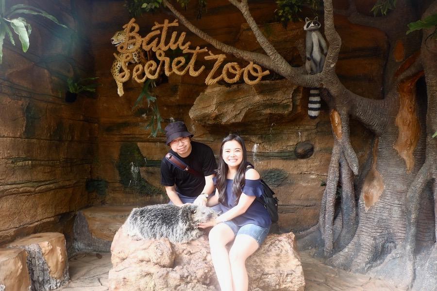 heytheregrace.com | Batu Secret Zoo, Jatim Park 2, Malang - Foto bareng binturong